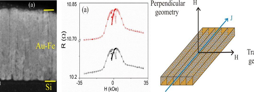 INCDFM: Film subțire nanoglobular de Fe-Au cu organizare lamelară a clusterilor magnetici pentru aplicații de senzoristică